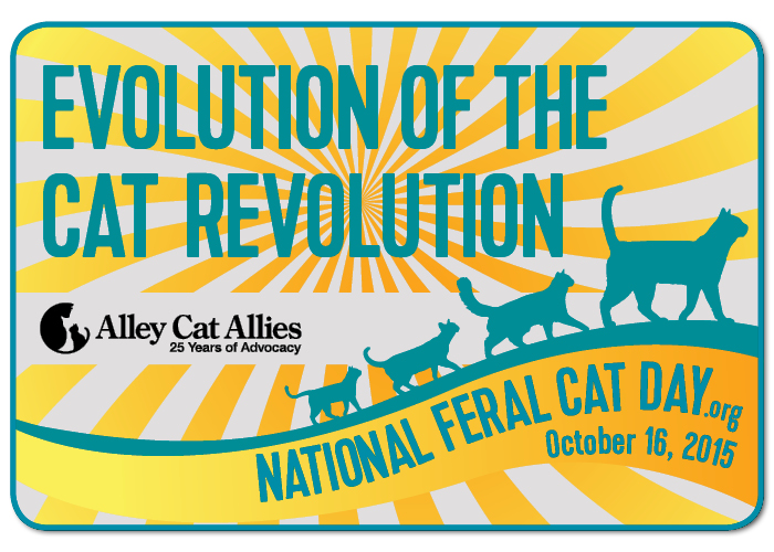National Feral Cat Day graphic