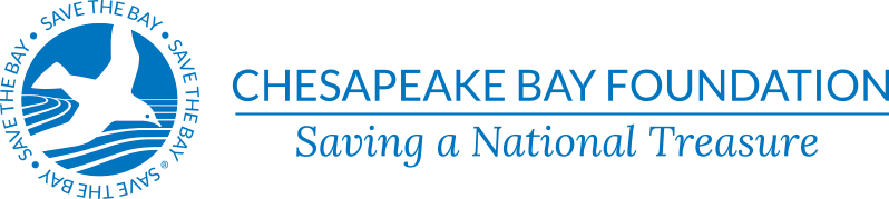 Chesapeake Bay Foundation: Saving a National Treasure