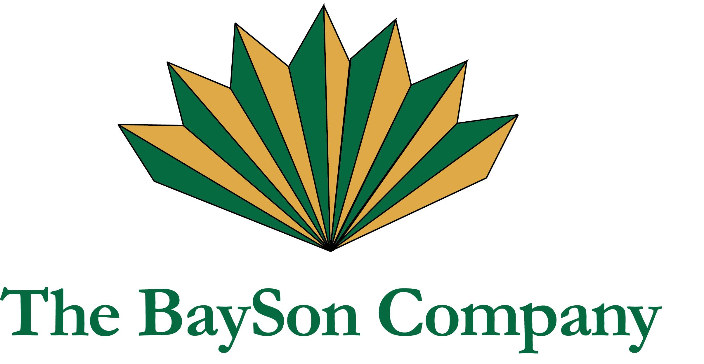 BaySon Co.