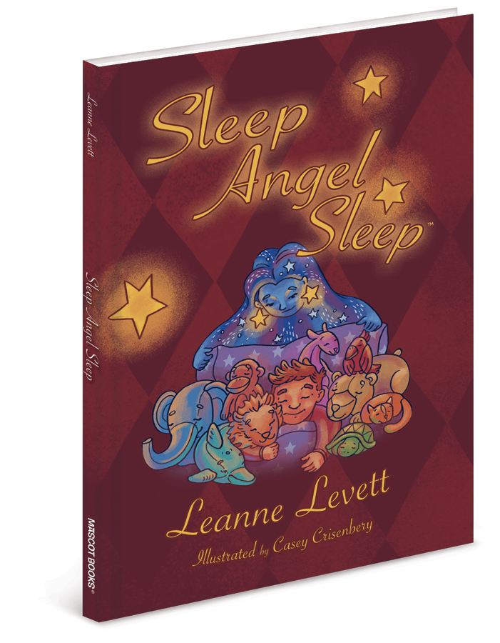Sleep Angel Sleep bookcover