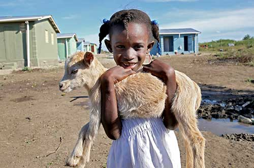 A goat to give milk