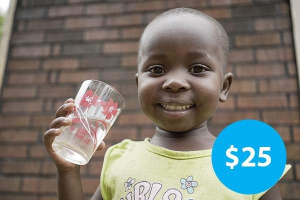 $25: Buy a Water Filtration System