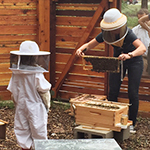 Click here for more information about 2018/05/05 - Family-friendly Bee Hive Tour