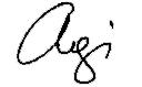 Agi signature.png
