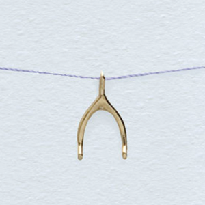Wishbone Necklace Gold