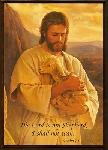Click here for more information about Good Shepherd Sympathy Card