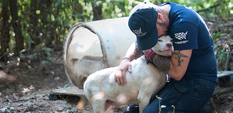 Protect Animals | Give a Gift - The Humane Society of the