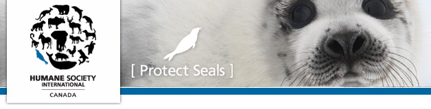 hsi_protect_seals