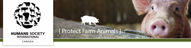 hsi_farm_animals