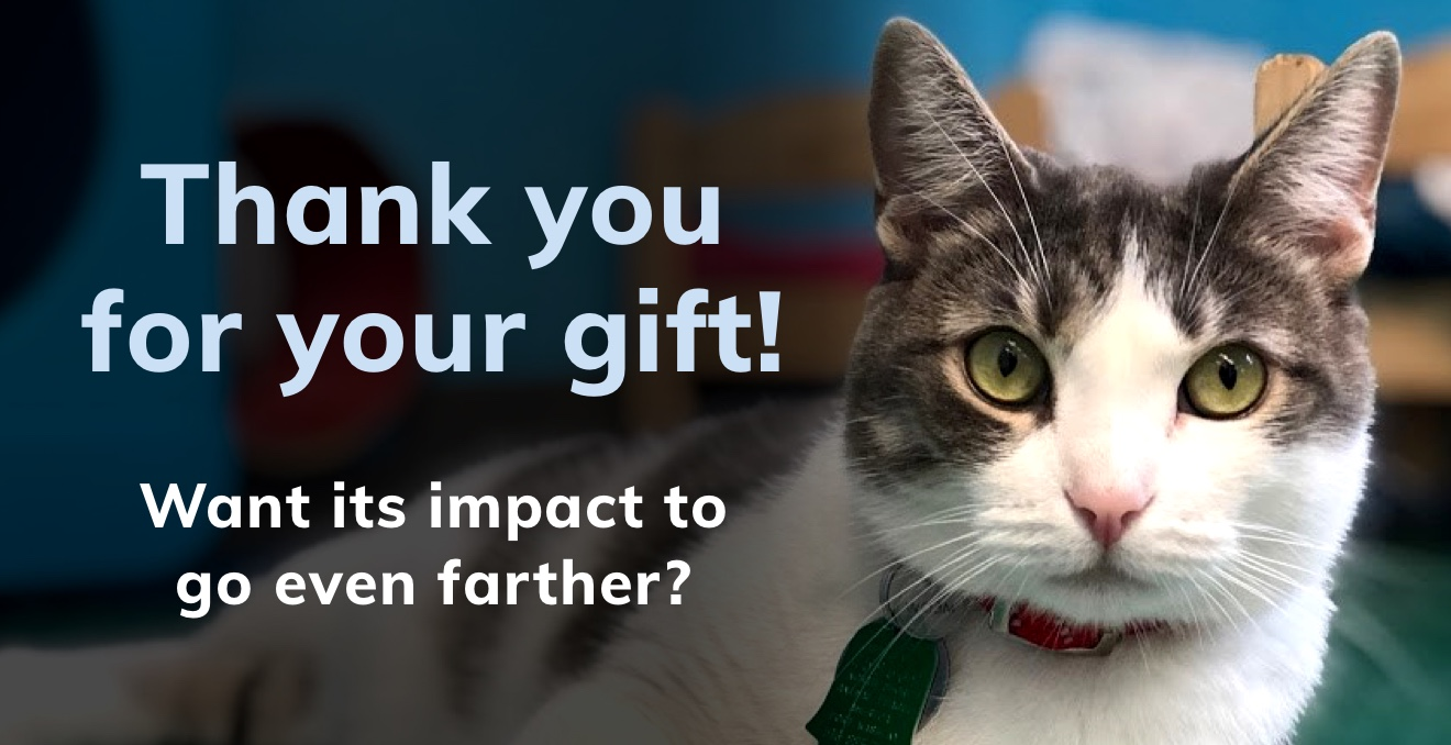 Thank you for your gift. Want to go fur-ther for pets?