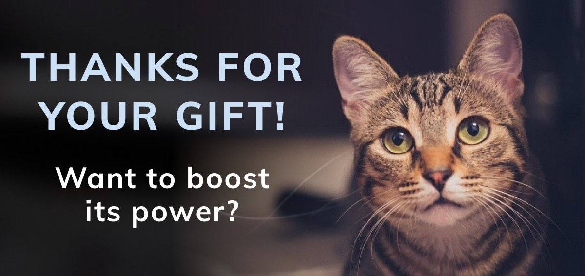 Thank you for your gift. Want to boost its power?