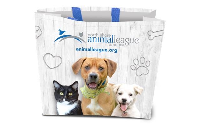 NSALA Fall Gift Shopping Bag