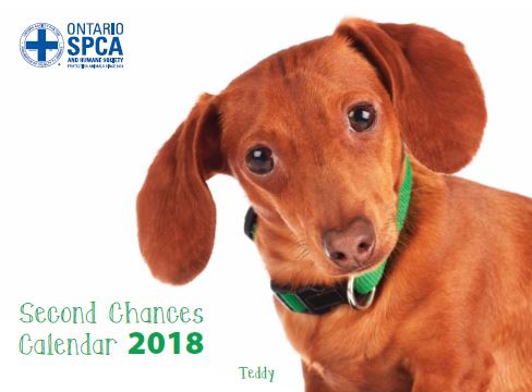 2018 Second Chances Calendar