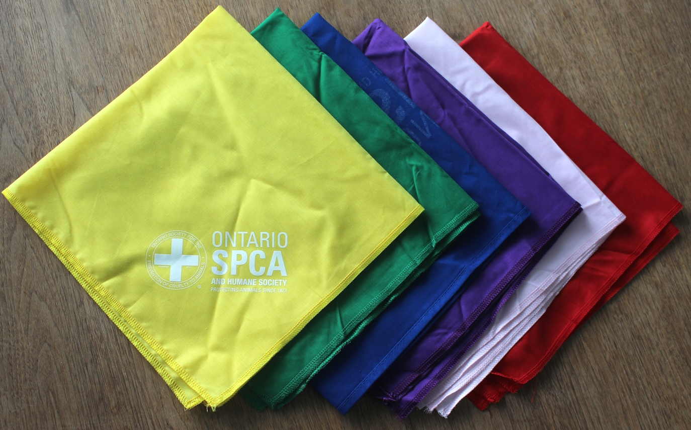 Pet Bandana Colours
