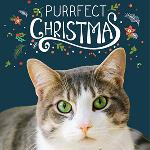 "Click here for more information about 10-pk ""Merry Christmas"" cards"