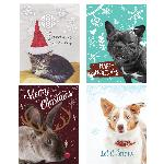 Click here for more information about 12-pk Animal Themed Holiday cards