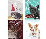 Click here for more information about 24-pk Animal Themed Holiday cards
