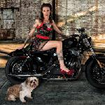Click here for more information about 2016 Pin-Ups and Pets Calendar