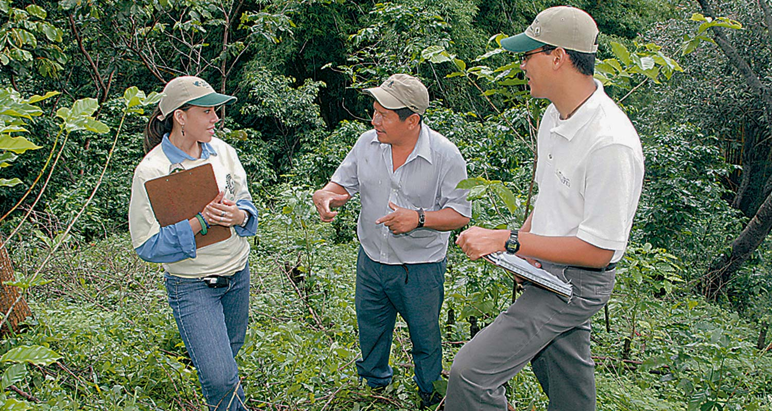 The Rainforest Alliance and UTZ to Merge