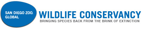 San Diego Zoo Global Wildlife Conservancy. Bringing species back from the brink of extinction