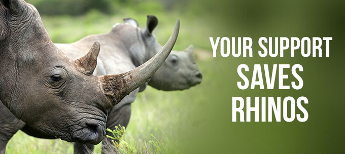 Your Support Saves Rhinos.