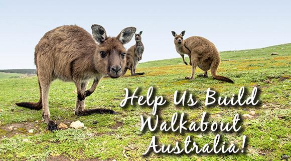 kangaroos_masthead_email_1