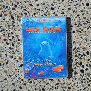 Sea Lion encounter dvd