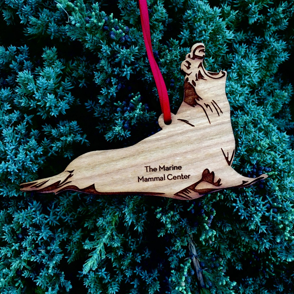 cherry wood ornament cut in elephant seal shape