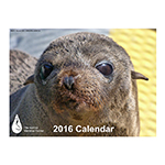 Click here for more information about The Marine Mammal Center 2016 Calendar