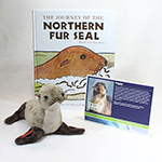 Click here for more information about Fur Seal Adoption Package