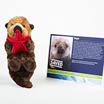 Click here for more information about Adopt-a-Seal® - Repo the Sea Otter Adoption Package, with Plush