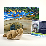 Click here for more information about Adopt-a-Seal® - Elephant Seal Adoption Package