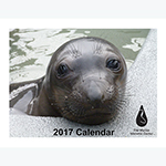 Click here for more information about The Marine Mammal Center 2017 Calendar