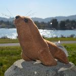 Click here for more information about Barking Plush Sea Lion