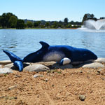 Click here for more information about Blue Whale Plush