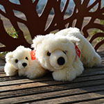 Click here for more information about Polar Bear Plush