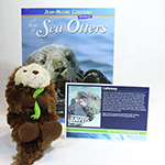 Adopt-a-Seal® - Calloway Adoption Package, with Book and Plush