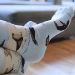 Click here for more information about ***NOW KIDS SIZE TOO*** Sea Lion Socks